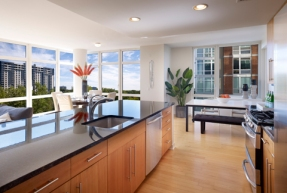 Model Unit at Trio in Palisades Park