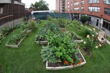 Lenox Community Garden.Small