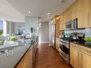 Model Penthouse Kitchen